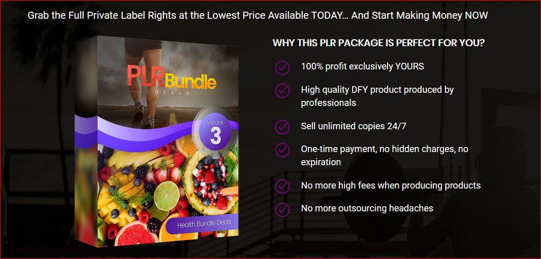 PLR Bundle Deals V3 Review