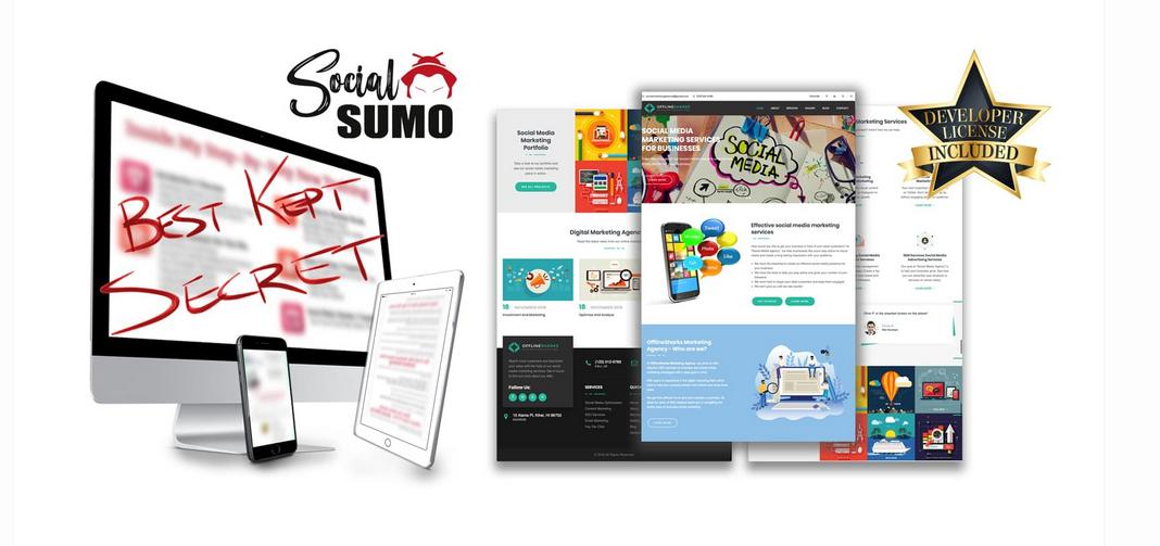 Social Sumo Review